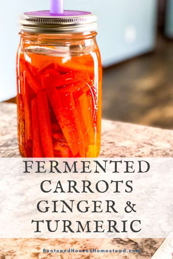 mason jar of carrots with fermenting lid