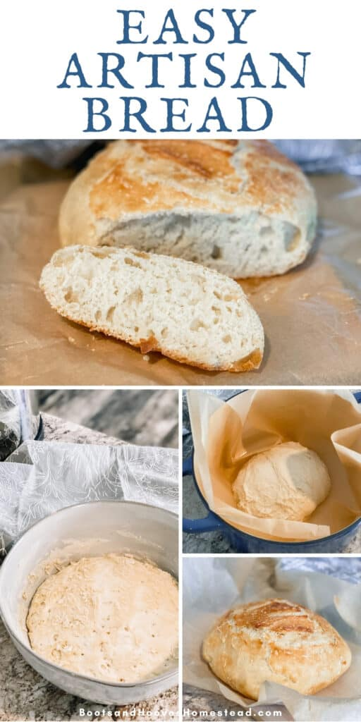photo collage of steps to making the artisan loaf bread recipe