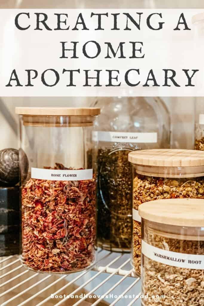 jars of dried herbs in pantry