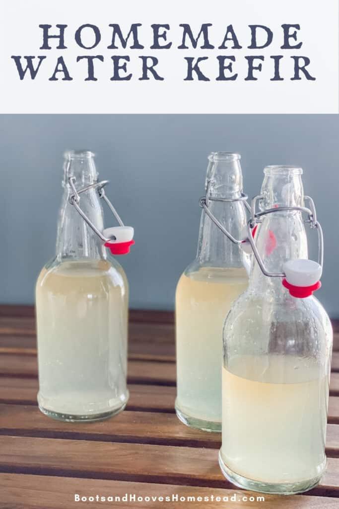 3 grolsch bottles with homemade water kefir